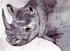 Poster print of Rhino by the artist artbasik Michael Rados